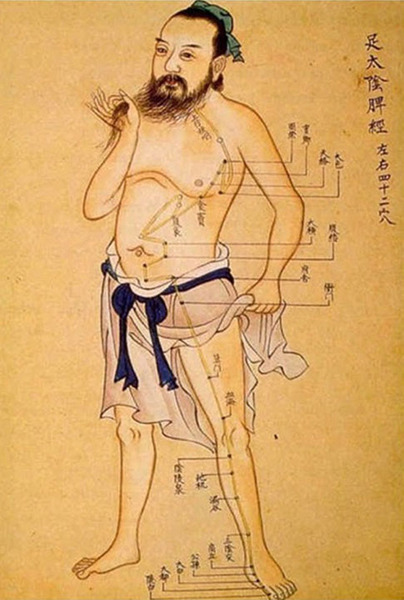 Acupuncture and Oriental Medicine points on the human body
